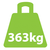363Kg Bariatric Fixed Lifter