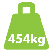 454Kg Bariatric Fixed Lifter